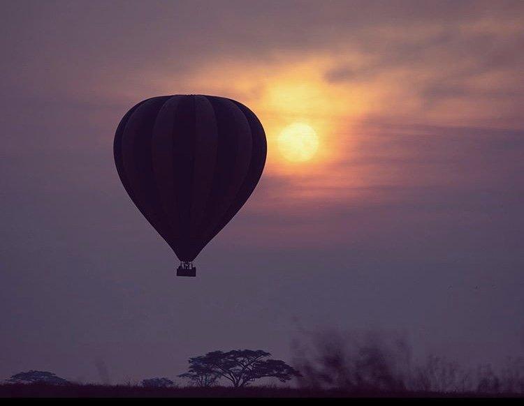 Serengeti National Park, Tanzania East Africa. Safari tours