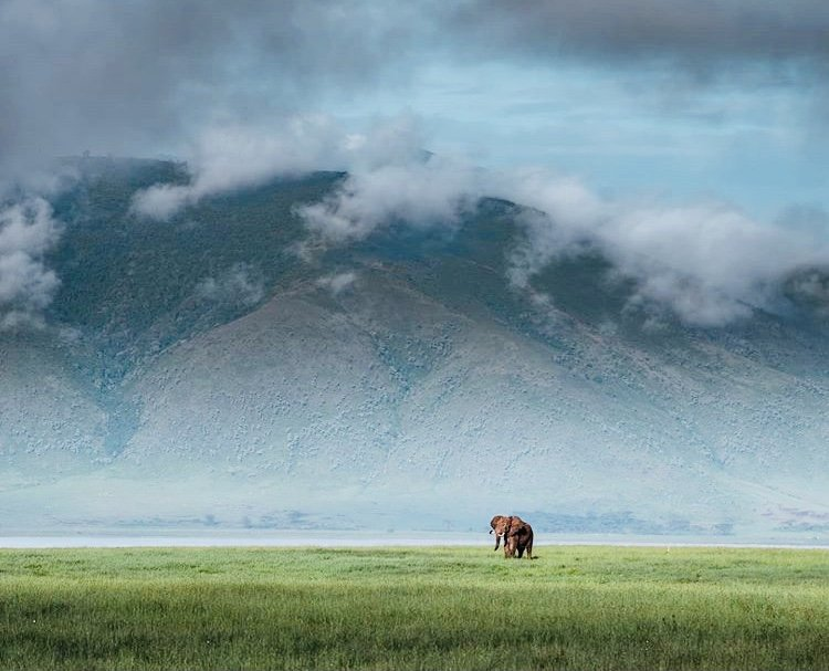 Ngorongoro Crater. Tanzania Tours