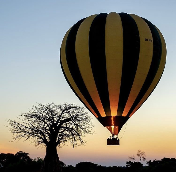 Balloon Safari Ruaha national park. Tanzania safaris