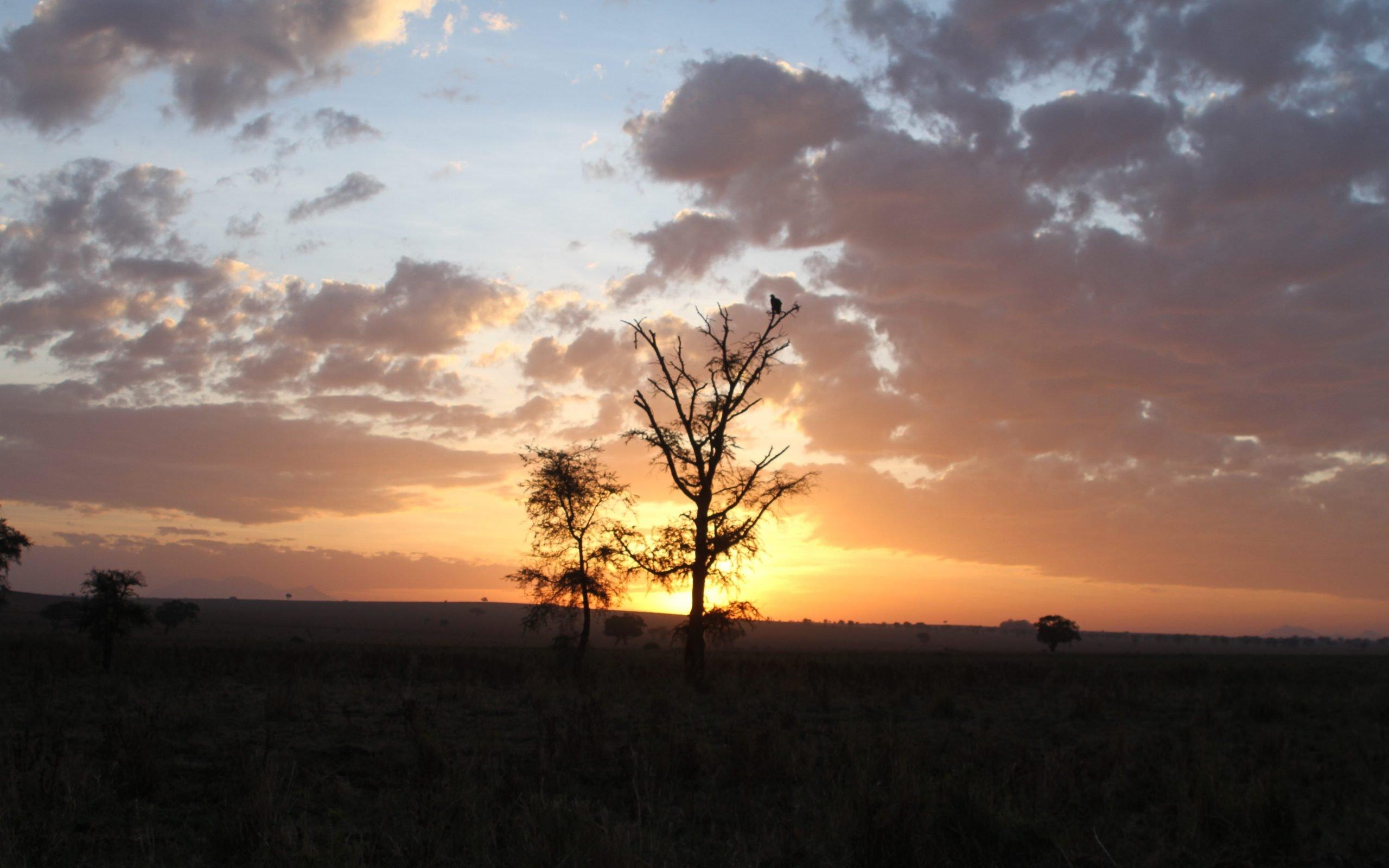African Sunset in Kidepo National Park Uganda