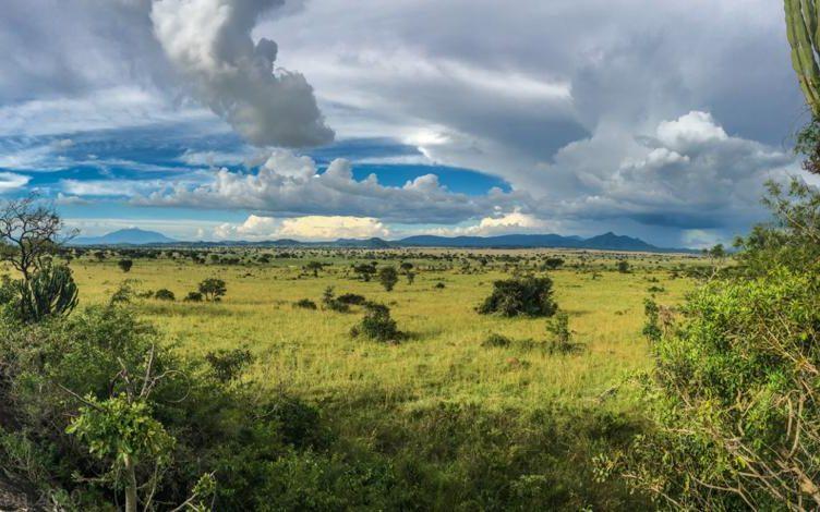 Pian Upe Game Reserve Destination Uganda